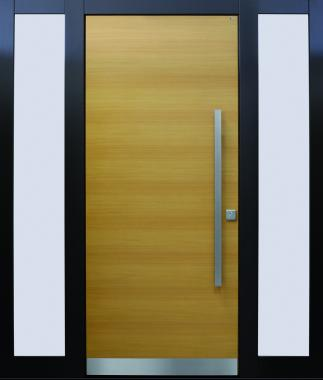 Haustür front door Current B9 T1 mit 2 Seitenteilen ST-B1 www.topic.at