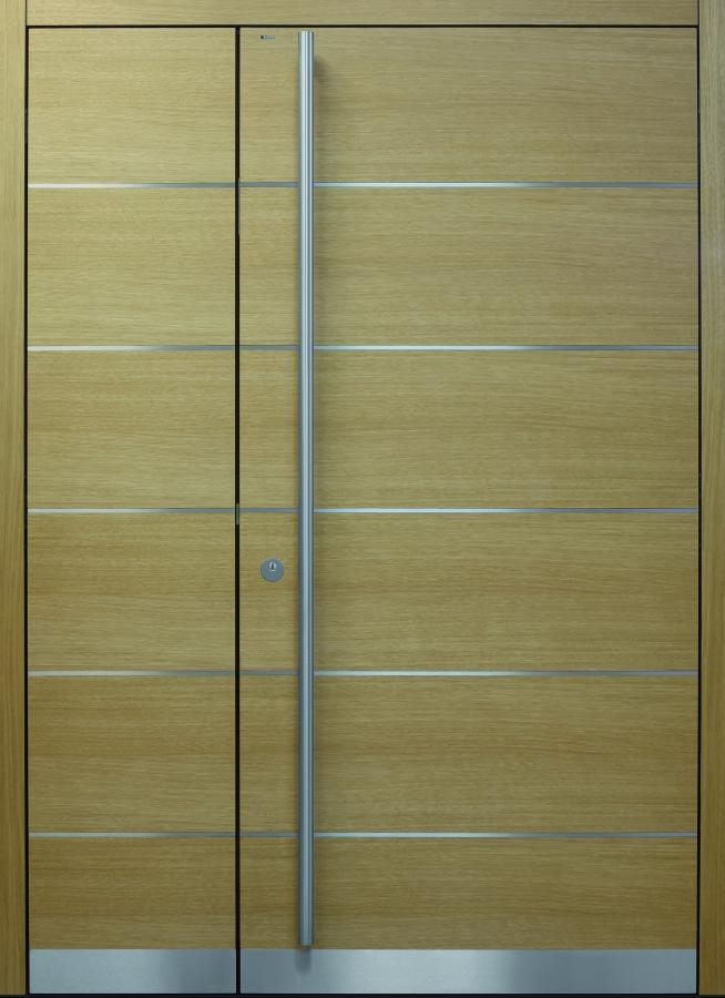 Haustür front door Current B9 T2 zweiflügelig  www.topic.at