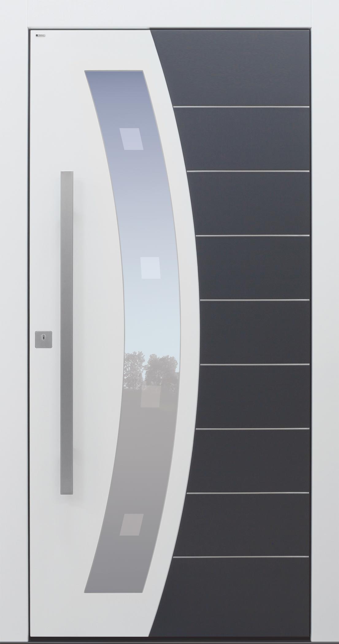 Haustür weiß mit Edelstahllinien und Glasmotiv Modell B62-T2   TOPIC ...